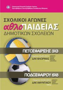 SxolikoiAgonesDimotikonSxoleion-Florina-Amyntaio-15-5-2013